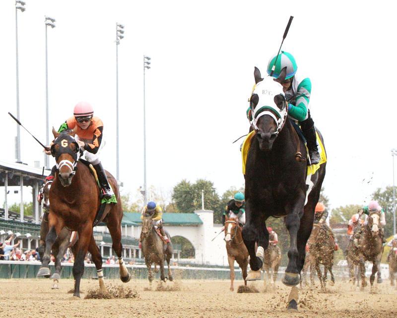 20161030 WARRIOR'S CLUB Spendthrift Stallion Stakes  (Coady) Under Rail