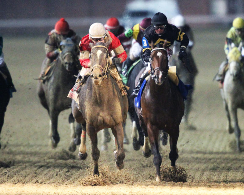 20161126 MCCRAKEN - The Kentucky Jockey Club Gr II (Coady) Head On