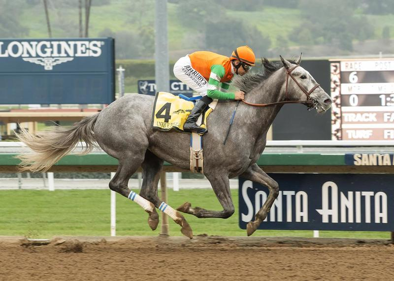 Don Alberto Stable's Unique Bella and jockey Mike Smith win the Grade II, $200,000 Las Virgenes Stakes, Sunday, February 5, 2017 at Santa Anita Park, Arcadia CA.© BENOIT PHOTO