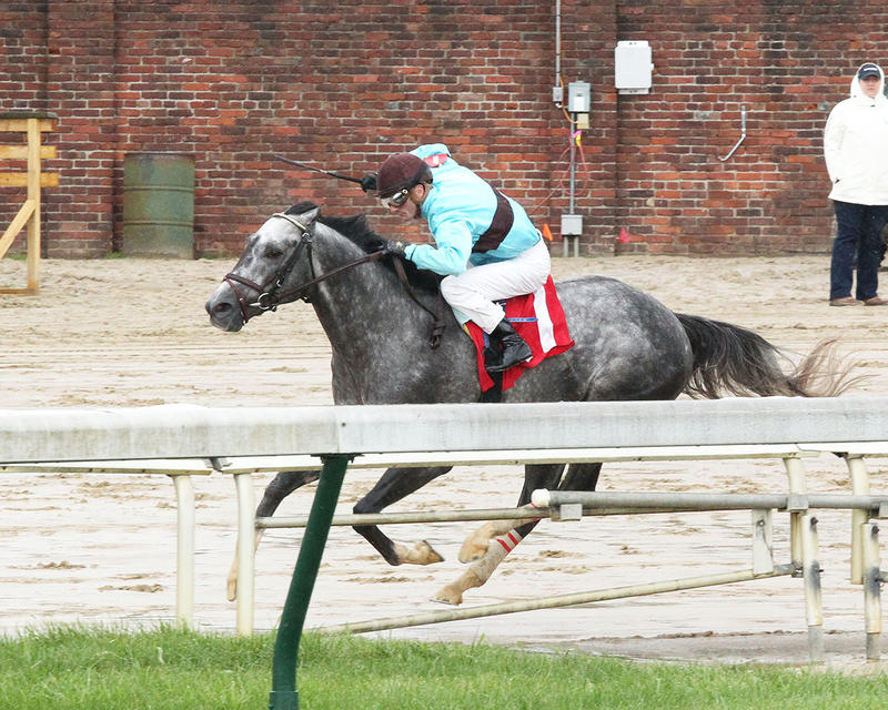 BIRD-SONG---The-Alysheba-Gr-ll---14th-Running---05-05-17---R06---CD---Inside-Turn-1