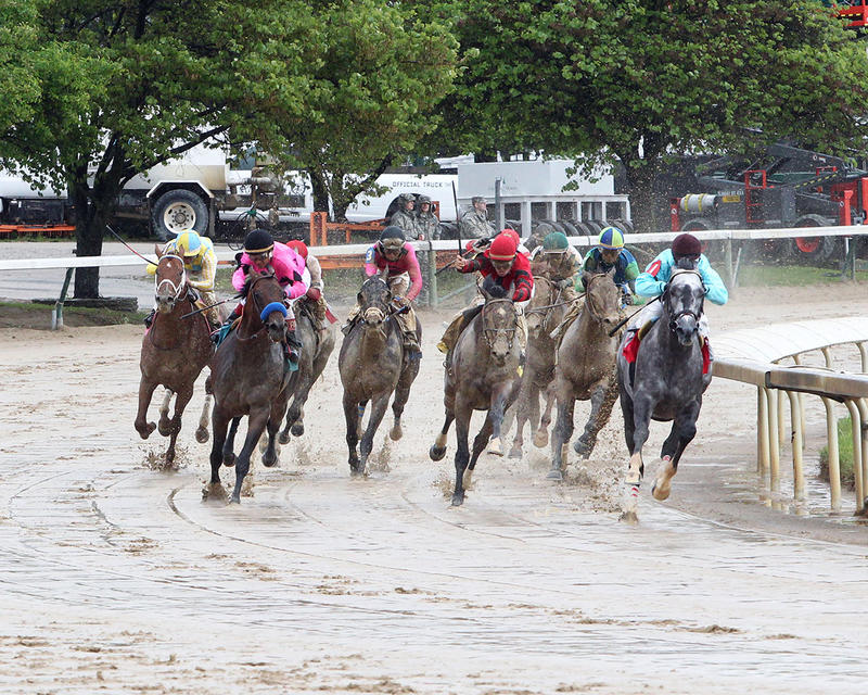 BIRD-SONG---The-Alysheba-Gr-ll---14th-Running---05-05-17---R06---CD---Turn-2