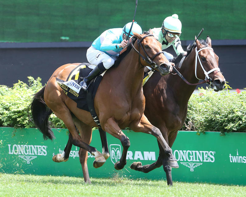 ROCA-ROJO---The-Churchill-Distaff-Turf-Mile-Gr-ll---The-32nd-Running---05-06-17---R07---CD---Finish-2
