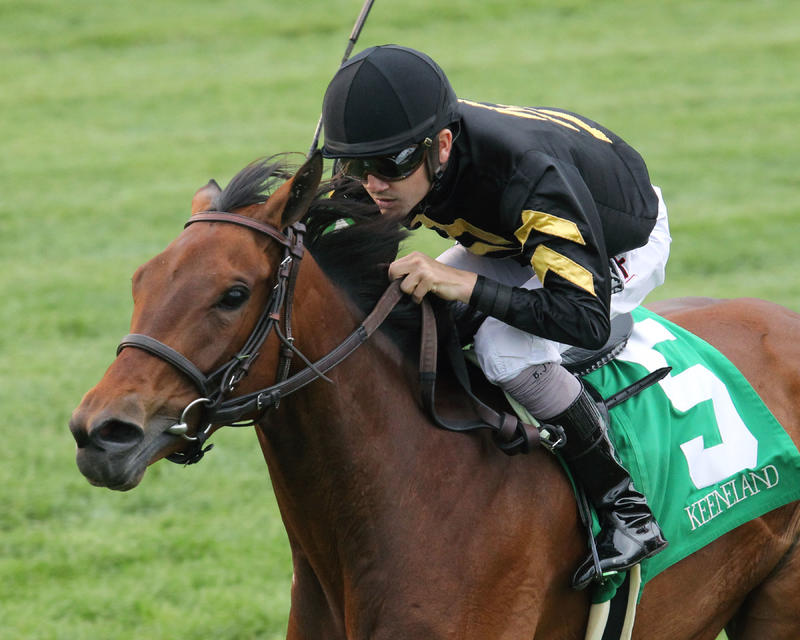 QUIET BUSINESSThe Bewitch Gr III - 56th RunningKeeneland Race Course  Lexington, KentuckyApril 28, 2017    Race #09Purse $150,0001-1/2 Miles-Turf  2:32.50Calumet Farm, OwnerGeorge R. Arnold, II, TrainerBrian J. Hernandez, Jr., JockeyDaring Duchess (2