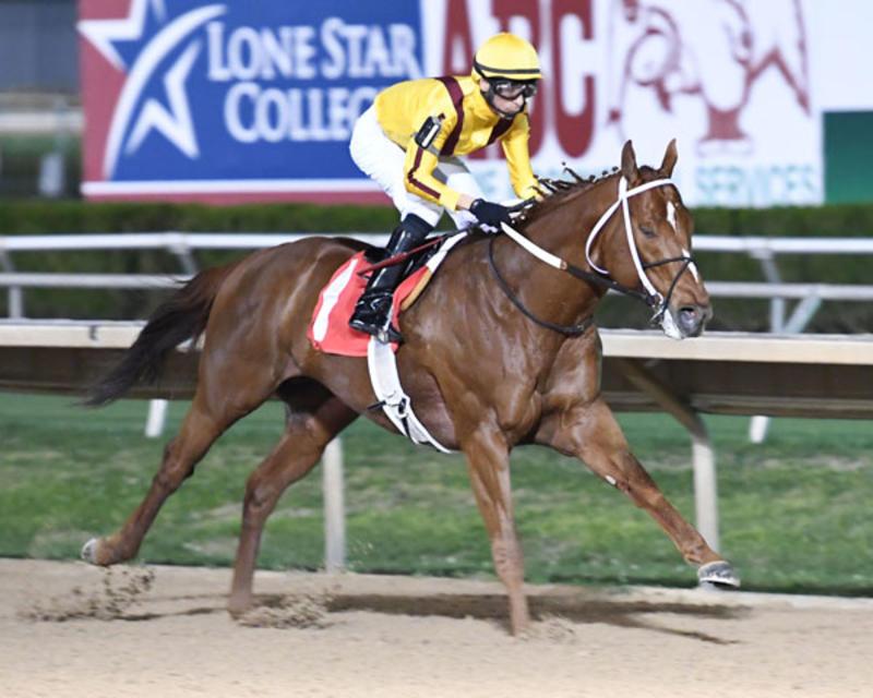 Union Jackson, Sam Houston Sprint Stakes (Coady)