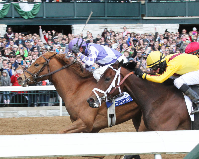 WEEP NO MOREThe Central Bank Ashland Gr 1 - 79th RunningKeeneland Race Course     Lexington, KentuckyApril 9, 2016    Race #06Purse $500,0001-1/16 Miles  1:43.57Ashbrook Farm, OwnerGeorge R. Arnold II, TrainerCorey J. Lanerie, JockeyRachel's