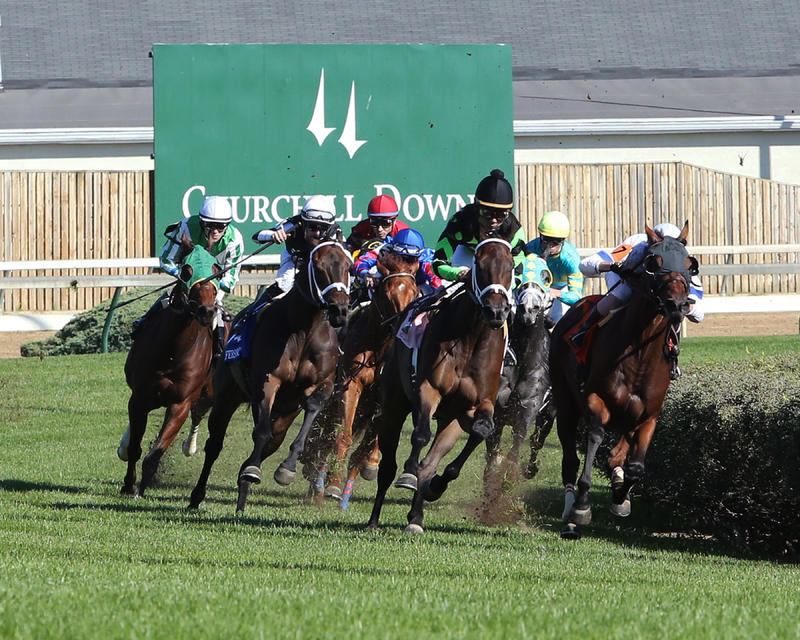 20170930 MR MISSUNDERSTOOD (2nd from right, black) Jefferson Cup (Coady) Turn