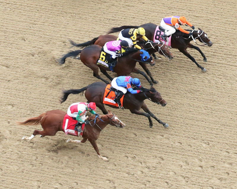 20171029 FIGHT ON (8)  Spendthrift Juvenile Stallion Stakes CD (Coady) Aerial 1
