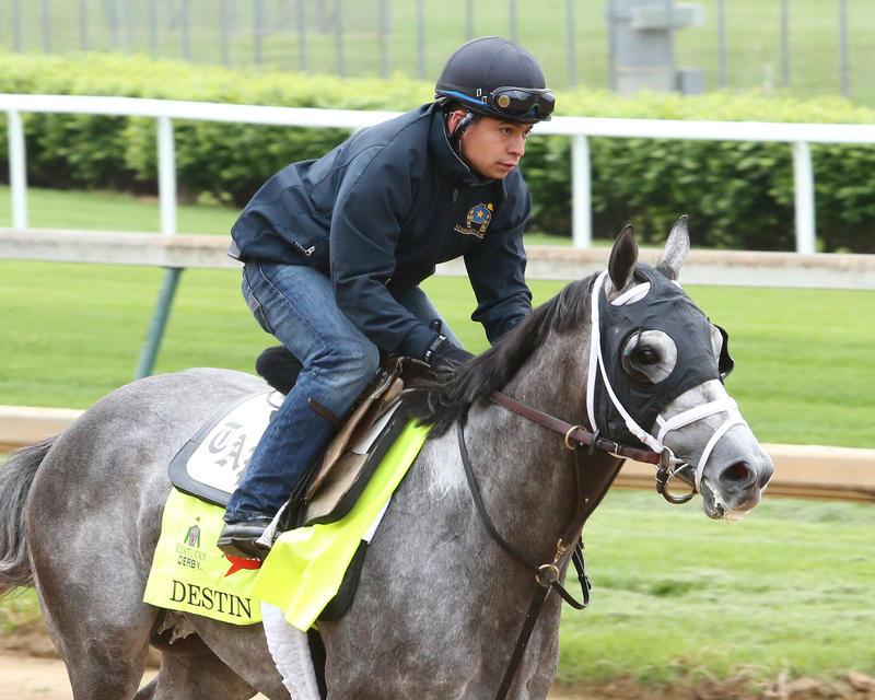 20160503 Destin gallop (Coady)
