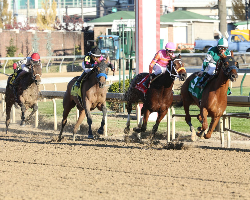 20171123 BLUE PRIZE - The Falls City Handicap Gr II CD (Coady) Turn 2