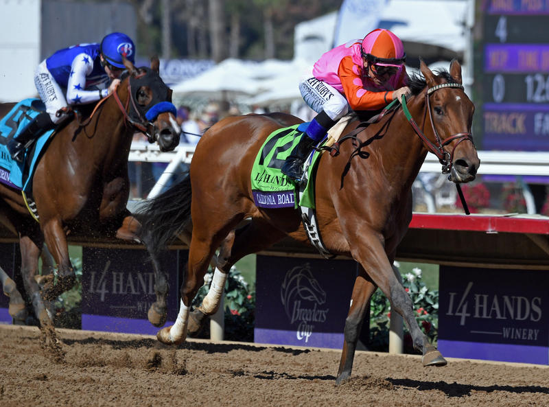 2017 Breeders' Cup World Championships at Del Mar - Day 1