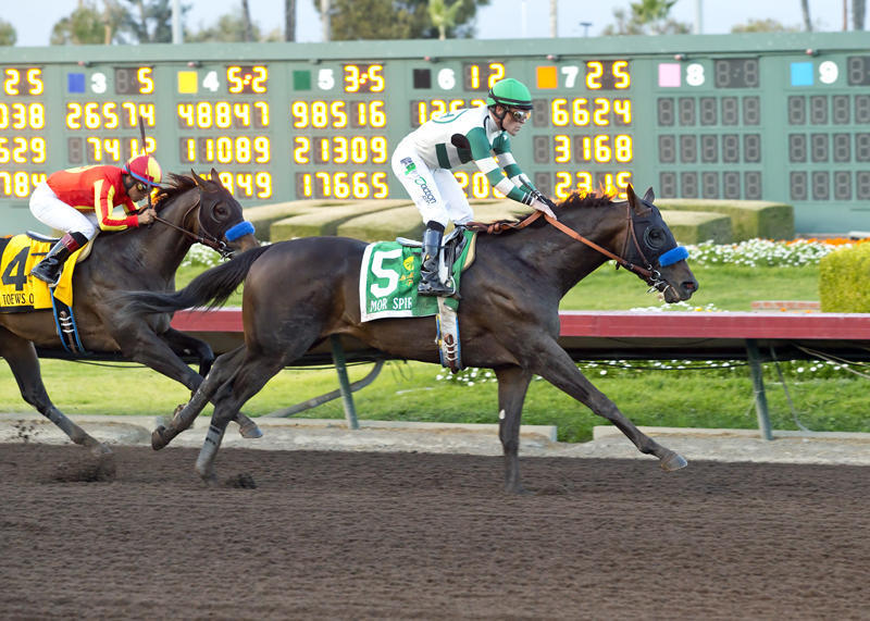 Los Alamitos Futurity Mor Spirit (Benoit Photography)3