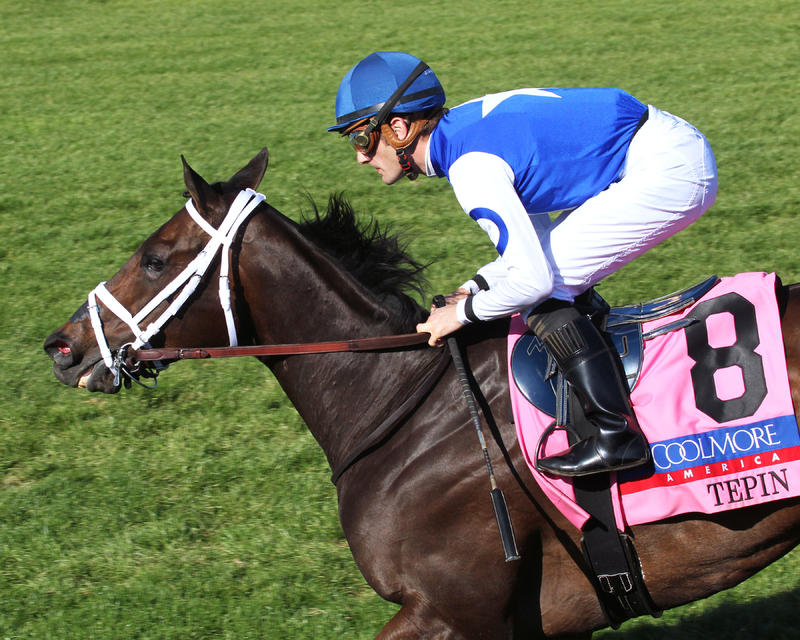 TEPINThe Coolmore Jenny Wiley Gr I - 28th RunningKeeneland Race Course     Lexington, KentuckyApril 16, 2016    Race #10Purse $350,0001-1/16 Miles-Turf  , OwnerMark E. Casse, TrainerJulien Leparoux, JockeyItsonlyactingdad (2nd)Illuminant (3rd)$2.80 $