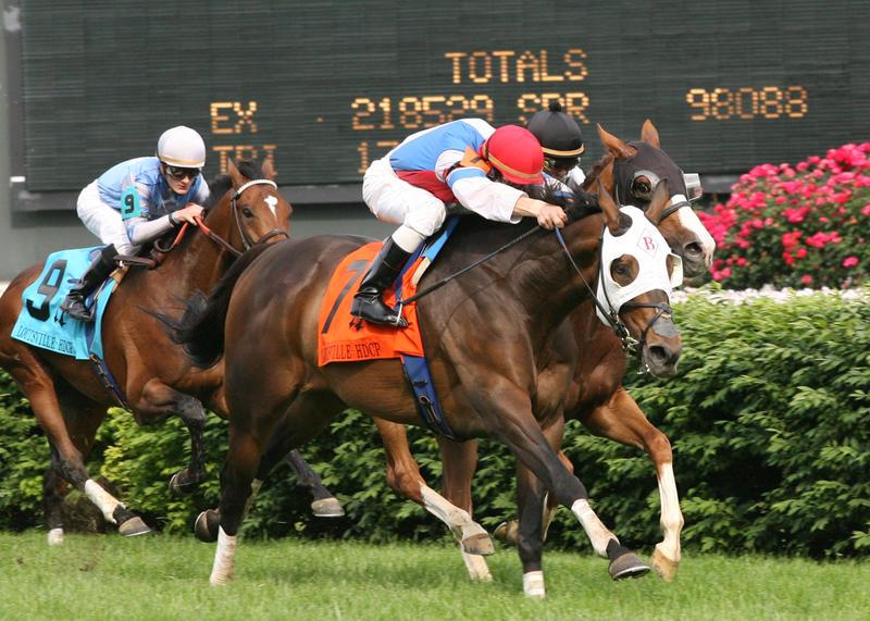 Brass Hat Wins 09 Louisville Handicap (stretch)