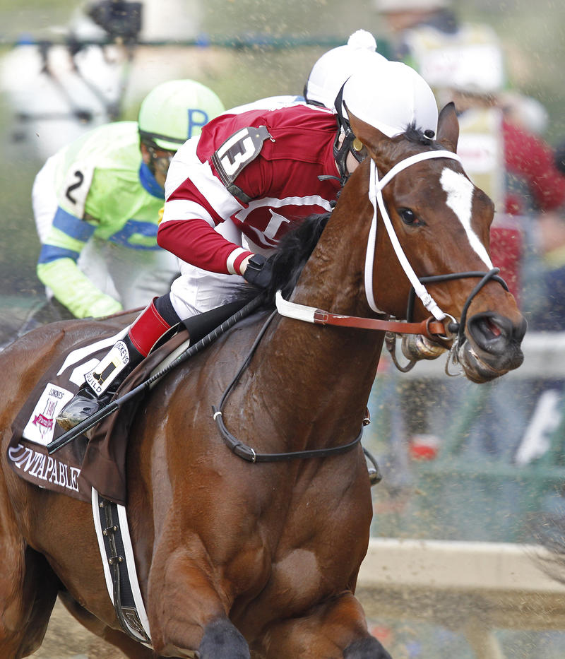 20140502 Untapable close-up