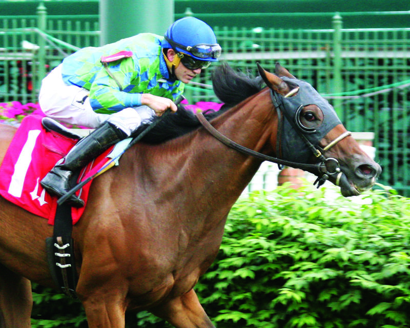 20160521 THATCHER STREET Opening Verse Overnight Stakes (Coady) Tight Fin